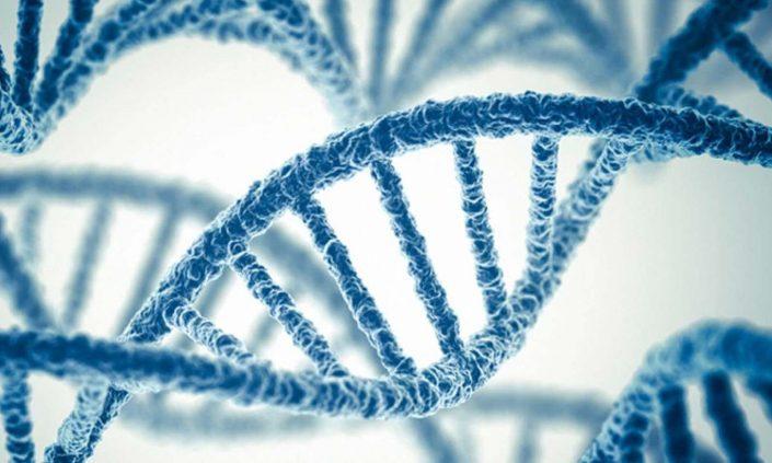 Tek gen hastalıkları ve PGT - İstanbul Genetik Grubu
