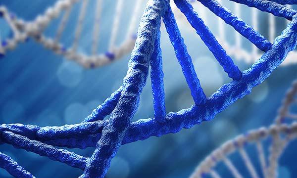 Sık uygulanan Genetik Testler