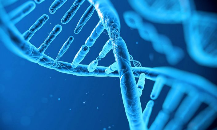 Preimplantasyon Genetik Tanı (PGT)